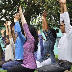 El yoga será parte de las actividades.   FOTO ILUSTRATIVA