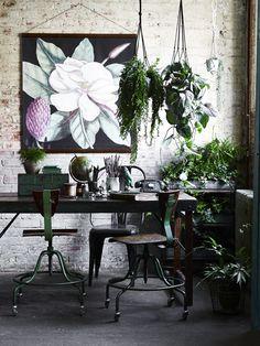 Ce matin ... j'ai aimé #7 / Des plantes dans la maison / Industrial Workspace, Industrial Home Offices, Industrial House, Industrial Furniture, Industrial Lighting, Modern Lighting, Industrial Style, Hanging Plants, Indoor Plants