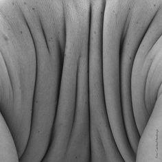 Instagram media by itaucultural - Resultado do projeto Corpo/Imagem e Seus Efeitos – selecionado pelo Rumos 2013-2014 –, o espetáculo Entreterras propõe uma reflexão sobre como uma linguagem, a #fotografia, pode alimentar o processo de criação de outra, a #dança, e vice-versa. Anote na agenda: dias 27 e 28. Não vai perder esta oportunidade, não é mesmo?