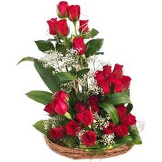 Flowers have the innate ability to brighten up the day of your loved one. This Mindblowing arrangement of 24 Red Roses in a round basket decorated with lots of greenary and white fillers is one of them. This arrangement is an ideal gift for your loved one in  India  even when it is sent with  Gifts to India. Thus, send this beautiful arrangement through  GiftstoIndia24x7.com  and make your dear ones day trully memorable.