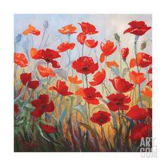Poppies at Dusk I Reproduction d'art