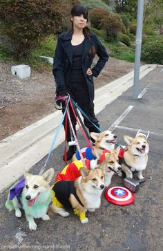 The World's Best Avengers Cosplay Only Includes One Human. It's Nick Fury handling all the Avengers! XD