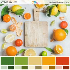 Today's dose of color inspiration is a citrus color palette featuring Fern Green, Sushi, Harvest Gold, Buttercup, and Tia Maria colors.