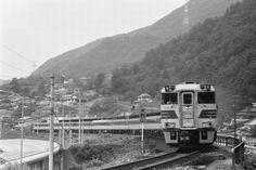 やくも Japanese Models, Diesel Engine, Trains