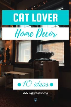 It is no secret that your home decor reflects your personality. And if you're a cat lover (like any sensible person is), having items in your house that remind you of your beloved, furry pet is an absolute joy. From clocks, vases, to garden statues, we offer you fifteen cat themed decors to take your home decor to the next level. #cat #cats #catowner #catlover #catblog #catspeople #cathome #catdecor #homedecor #catmom #catdad #housewarming Take You Home, Cat Decor, Cat Dad, Cat Names, Garden Statues, Cat Design, Home Decor Items, Clocks, Vases