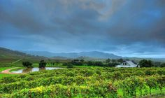 A Rainy Morning in the Hunter Valley Rainy Morning, Australia Living, Once In A Lifetime, Weekend Is Over, Sky, Mountains, Landscape, Places, Nature