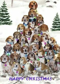Beagles Christmas Tree More