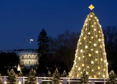 Our favorite Washington DC Christmas events in DC including the National Christmas Tree Lightning, Zoolights & at Gaylord National's ICE.