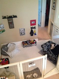 Dog room designs on pinterest for House plans with pet rooms
