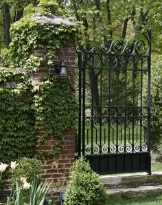 beautiful iron gate...