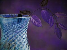 Arching Slider | Flickr - Photo Sharing!