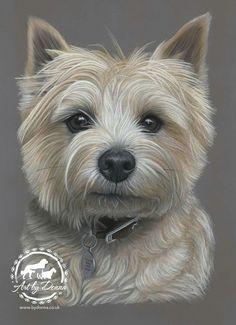 Pet Portraits & Animal Art by UK Artist Donna Animal Paintings, Animal Drawings, Art Drawings, Dog Portraits, Portrait Art, Crayons Pastel, West Highland Terrier, Dog Illustration, Color Pencil Art