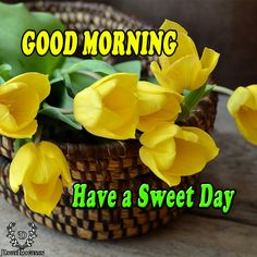 Good Morning have a Sweet day. #goodmorning #gm #quotes