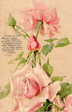 French antique postcards flower Fairymelody collections http://www.amazon.co.jp/dp/B00T1NFXWC/ref=cm_sw_r_pi_dp_weY5vb0N8737V