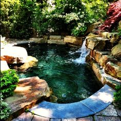 Small Natural Pool Designs lovely kidney shaped pool with raise spa and diving rock landscape design portfolio hoffman Mini Inground Pools With Waterfall Yahoo Image Search Results