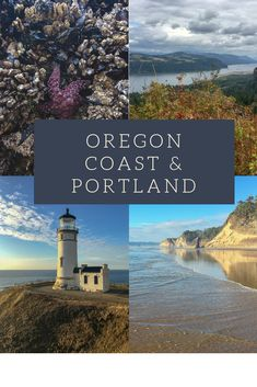 A guide to a relaxing road trip on the Oregon Coast & back up to Portland, where you will see beaches, rock formations, wildlife, and some beautiful views!