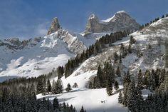 #Wanderung Lindauer Hütte: http://www.downhillhoppers.com/?p=5887