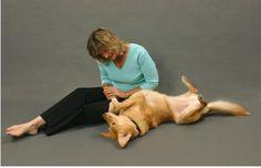 #Animal Communication - An Effective Behavioral Technique
