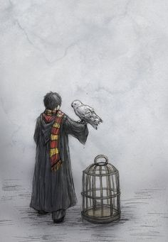 Harry by ejbeachy.deviantart.com on @DeviantArt …