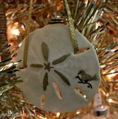 Handpainted sand dollar Christmas ornament ~ have some that my mother-in-law made over thirty years ago!