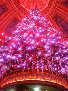 The infamous Christmas tree in The Dome, Edinburgh. This place smells like Xmas. For more tips on where to drink in Edinburgh, click on.