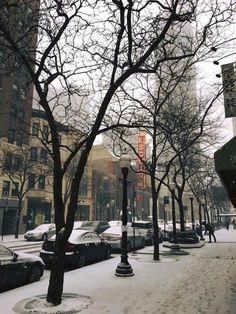 Oak Street, Gold Coast, Chicago