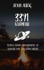 beyzaalkoc tarafından yazılmış 3391 Kilometre adlı hikaye
