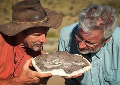 """Tiktaalik isn't just proof of evolution; it's proof that the scientific process works. Evolutionary theory predicted that this fish existed and that its remains would be found within geological layers of a specific age. Hence, Shubin's trips to Canada, where those rock layers are found. """"We designed this expedition with the goal of finding this exact fossil,"""" explains Shubin. """"We used evolution and geology as tools to make a prediction about where to look. And the prediction was confirmed."""""""
