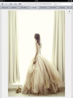 Gorgeous tulle princess dress