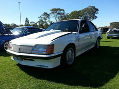 Group 3 Brock Commodore VH