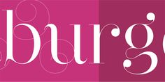 Narziss - Webfont & Desktop font « MyFonts
