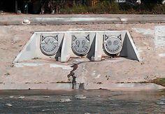 LA River Cats