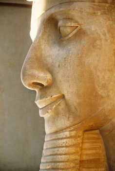 Egypt, Cairo, Mit Rahina, ancient Memphis, colossal limestone statue of Ramses II