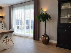 Kamerplanten – ZoSan & Co Ramen, Windows, Curtains, Home Decor, Blinds, Window, Interior Design, Draping, Home Interior Design