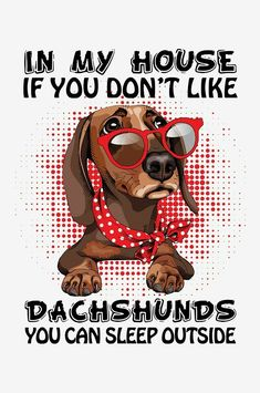 """Excellent """"Dachshund Pups"""" detail is available on our site. Check it out and you wont be sorry you did. Dachshund Shirt, Dapple Dachshund, Funny Dachshund, Mini Dachshund, Daschund, Weenie Dogs, Dachshund Puppies, Dachshunds, Doggies"""