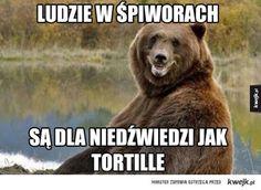 #mem #kwejk #humor