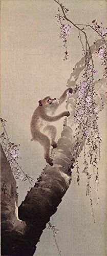 "Japanese Art Print ""Monkey and Cherry Blossoms"" by Ohara Koson. Shin Hanga and Art Reproductions http://www.amazon.com/dp/B016Z849RU/ref=cm_sw_r_pi_dp_UQxswb0X69FMZ"