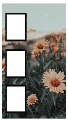 Framed Wallpaper, Cute Wallpaper Backgrounds, Aesthetic Iphone Wallpaper, Polaroid Picture Frame, Polaroid Pictures, Story Instagram, Creative Instagram Stories, Birthday Post Instagram, Instagram Frame Template