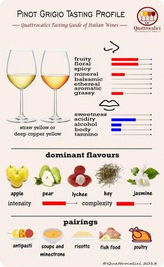 Impariamo a degustare il Pinot grigio su Quattrocalici. Wine Party Appetizers, Wine Parties, Wine Infographic, Wine Facts, Chateauneuf Du Pape, Wine Tasting Party, Wine Guide, Cheap Wine, In Vino Veritas
