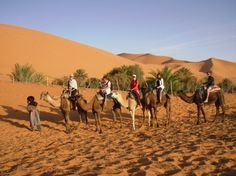 If you want to experience Sahara Desert take up camel trips from a few hours to several days or even weeks.