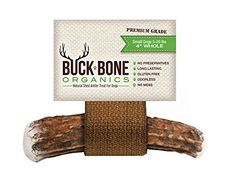 """Elk Antler Dog Bone, Organic Chew, All Natural Healthy 4\"""" Chew For Small Dogs, From Montana Elk, Made in USA, >>> Learn more by visiting the image link."""