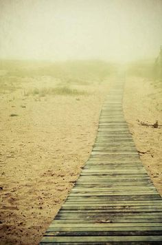 .follow the wood way and find the sand monster
