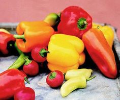 Brighten up your garden and your meals with fresh peppers. Find out how to grow them here: http://www.bhg.com/gardening/vegetable/vegetables/grow-colorful-vegetables/?socsrc=bhgpin052713growpeppers=3