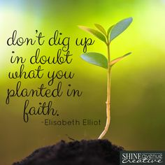 """Don't dig up in doubt what you planted in faith."" - Elisabeth Eliot  #timetoshine"