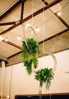 flowers in wood hoops, hanging wedding flowers, reception wedding flowers flowers reception Alicia + Geordie Hanging Centerpiece, Flower Centerpieces, Ceiling Hanging, Ceiling Decor, Tropical Chandeliers, Rustic Wedding Alter, Wedding Ceiling, Floral Hoops, Hanging Flowers