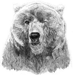 Jamie Mitchell illustrations...sooo cute!