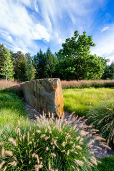 In Situ Estate | Land Morphology | Archinect