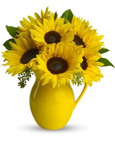 Send flowers from a real Peabody, MA local florist. Evans Flowers has a large selection of gorgeous floral arrangements and bouquets. We offer same-day flower deliveries for flowers. Sunflower Arrangements, Sunflower Bouquets, Sunflower Flower, Sunflower Seeds, Yellow Sunflower, Send Flowers, Summer Flowers, Fresh Flowers, Beautiful Flowers