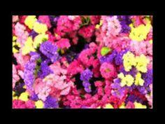 연산동풀싸롱《 010-4882-1888》은하팀장∼※ 부산풀살롱