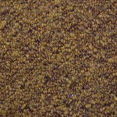 Beige Carpet Dye | Carpets | Pinterest | Beige carpet, Beige and ...